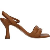 Pantofi Femei Sandale  Paola Ferri D7439 BROWN