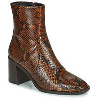 Pantofi Femei Botine Minelli MARIELLA Maro