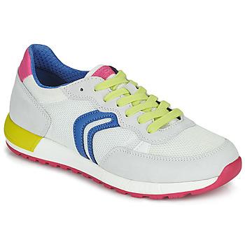 Pantofi Fete Pantofi sport Casual Geox J ALBEN GIRL Alb / Albastru / Roz