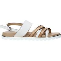 Pantofi Femei Sandale  Alviero Martini E087 422A Alb