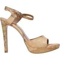 Pantofi Femei Sandale  Alviero Martini E130 8391 Maro
