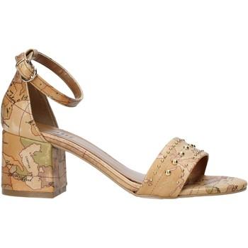 Pantofi Femei Sandale  Alviero Martini E121 8391 Maro