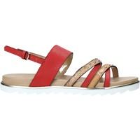 Pantofi Femei Sandale  Alviero Martini E087 422A Roșu