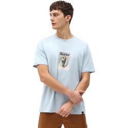 Îmbracaminte Bărbați Tricouri mânecă scurtă Dickies DK0A4X9IB551 Albastru