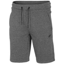 Îmbracaminte Bărbați Pantaloni scurti și Bermuda 4F SKMD014 Gri