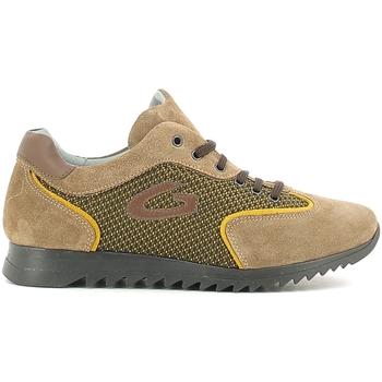 Pantofi Copii Pantofi sport Casual Alberto Guardiani GK22343G Bej