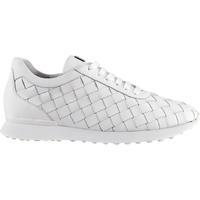 Pantofi Femei Pantofi sport Casual Högl Attract Trainers White White