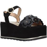 Pantofi Femei Sandale  Docksteps DSE104973 Negru