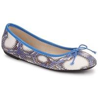 Pantofi Femei Balerin și Balerini cu curea Koah GAME Albastru