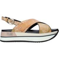 Pantofi Femei Sandale  Alviero Martini E109 8391 Maro