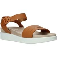 Pantofi Femei Sandale  IgI&CO 5172000 Maro