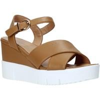 Pantofi Femei Sandale  Docksteps DSW952001 Maro