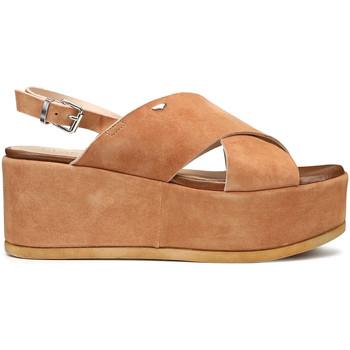 Pantofi Femei Sandale  Alberto Guardiani AGW003001 Maro