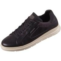 Pantofi Bărbați Pantofi sport Casual Bullboxer 895K20968ABLCKSU10 Cafenii