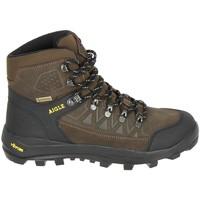 Pantofi Bărbați Drumetie și trekking Aigle Letrak SU GTX Marron Maro