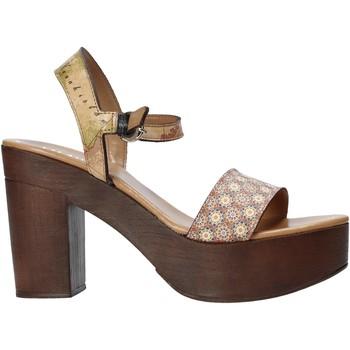 Pantofi Femei Sandale  Alviero Martini E112 626A Maro