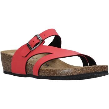 Pantofi Femei  Flip-Flops Valleverde G5306 Roșu