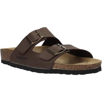 Pantofi Bărbați Papuci de vară Valleverde G59900 Maro