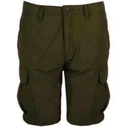 Îmbracaminte Bărbați Pantaloni scurti și Bermuda Napapijri  verde