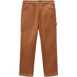 Îmbracaminte Femei Pantalon 5 buzunare Dickies DK0A4XJHBD01 Maro