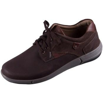 Pantofi Bărbați Pantofi sport Casual Josef Seibel Enrico 11 Cafenii