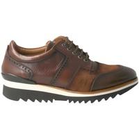 Pantofi Bărbați Pantofi sport Casual Calce  Marrón