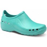 Pantofi Bărbați Pantofi sport Casual Feliz Caminar ZAPATO SANITARIO UNISEX FLOTANTES SHOES verde