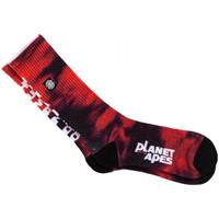 Accesorii Bărbați Sosete Element Pota skate socks roșu