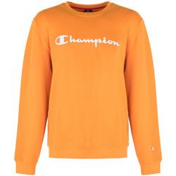Îmbracaminte Bărbați Hanorace  Champion  portocaliu