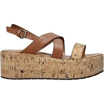 Pantofi Femei Sandale  Alviero Martini E095 578A Maro