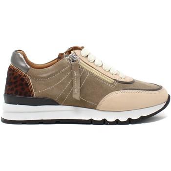 Pantofi Femei Pantofi sport Casual Grunland SC5237 Maro