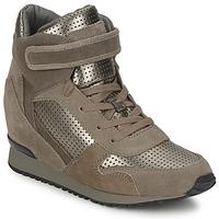 Pantofi Femei Pantofi sport stil gheata Ash DRUM Maro / Auriu