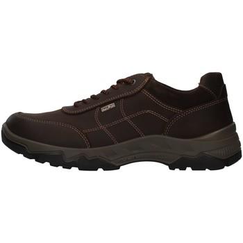 Pantofi Bărbați Drumetie și trekking Enval 8218022 BROWN