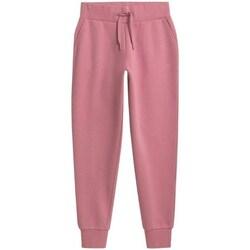 Îmbracaminte Femei Pantaloni  4F SPDD351 Roz