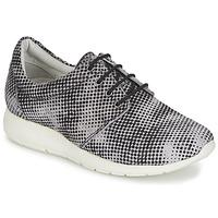 Pantofi Femei Pantofi sport Casual Maruti WING Maro