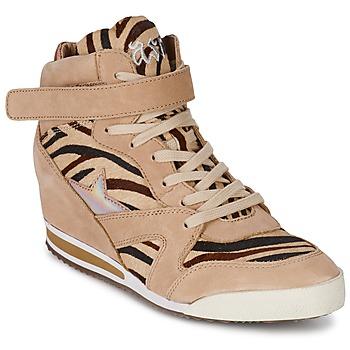 Pantofi Femei Pantofi sport stil gheata Ash JAZZ Zebra