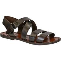 Pantofi Femei Sandale  Gianluca - L'artigiano Del Cuoio 508 D MORO CUOIO Testa di Moro