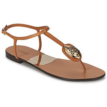 Pantofi Femei  Flip-Flops Roberto Cavalli XPX243-PZ220 Maro