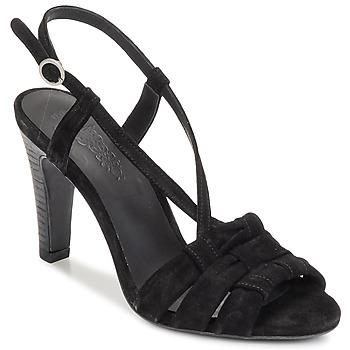Pantofi Femei Sandale  n.d.c. SOFIA Negru
