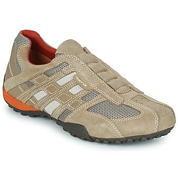 Încăltăminte Bărbați Pantofi sport Casual Geox SNAKE L Bej