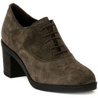 Pantofi Femei Pantofi Oxford Frau SOFTY VISONE Marrone