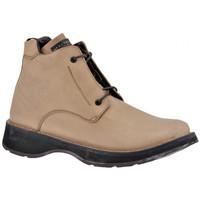 Pantofi Bărbați Drumetie și trekking Nex-tech  Bej