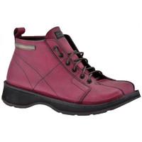 Pantofi Bărbați Drumetie și trekking Nex-tech  Maro