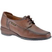 Pantofi Femei Pantofi Oxford Mephisto  Maro