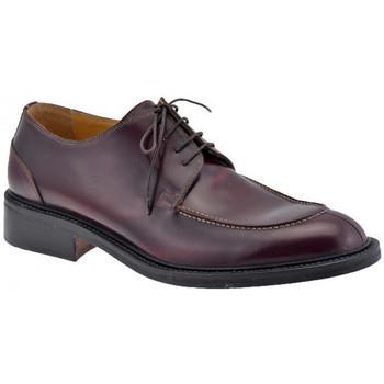 Pantofi Bărbați Pantofi Oxford Lancio  Maro