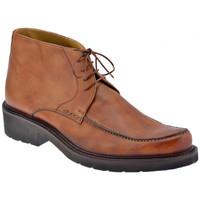 Pantofi Bărbați Ghete Lancio  Maro