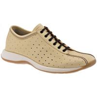 Pantofi Bărbați Pantofi sport stil gheata Lumberjack  Bej