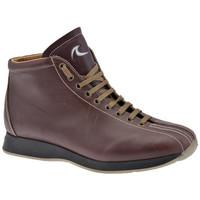 Pantofi Bărbați Pantofi sport stil gheata Docksteps  Multicolor