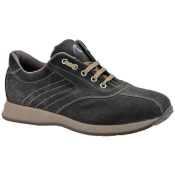 Pantofi Bărbați Pantofi sport stil gheata Docksteps  Gri