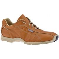 Pantofi Bărbați Pantofi sport stil gheata Docksteps  Bej